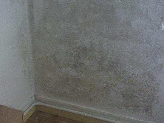 Eliminar humedades por condensaci n soluciones urik - Humedad por condensacion en paredes ...